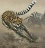 Into the Herd - Cross Stitch Chart